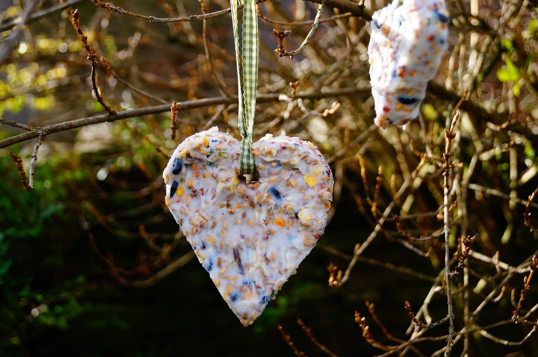 2 hearts back garden